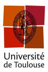 Logo University Toulouse